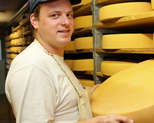 a man with a wheel of cheese in a cheese production factory
